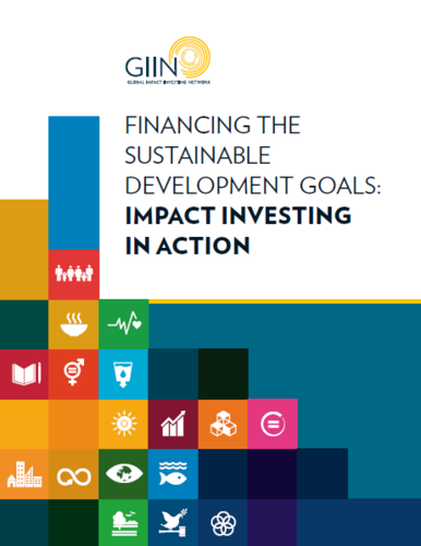 Financing the Sustainable Development Goals: Impact Investing in Action