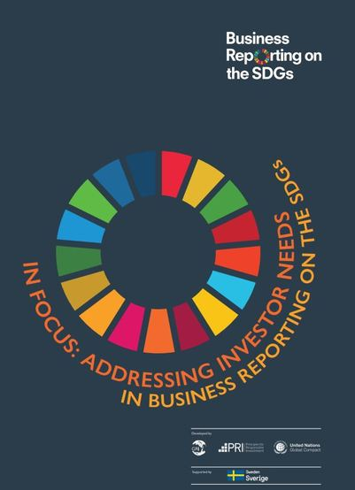 In Focus: Addressing Investor Needs in Business Reporting on the SDGs